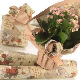 gift box b-848pm