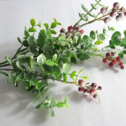 Ramo di eucalipto, con foglie e bacche floccate
